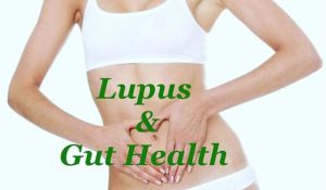 Lupus and The Giut